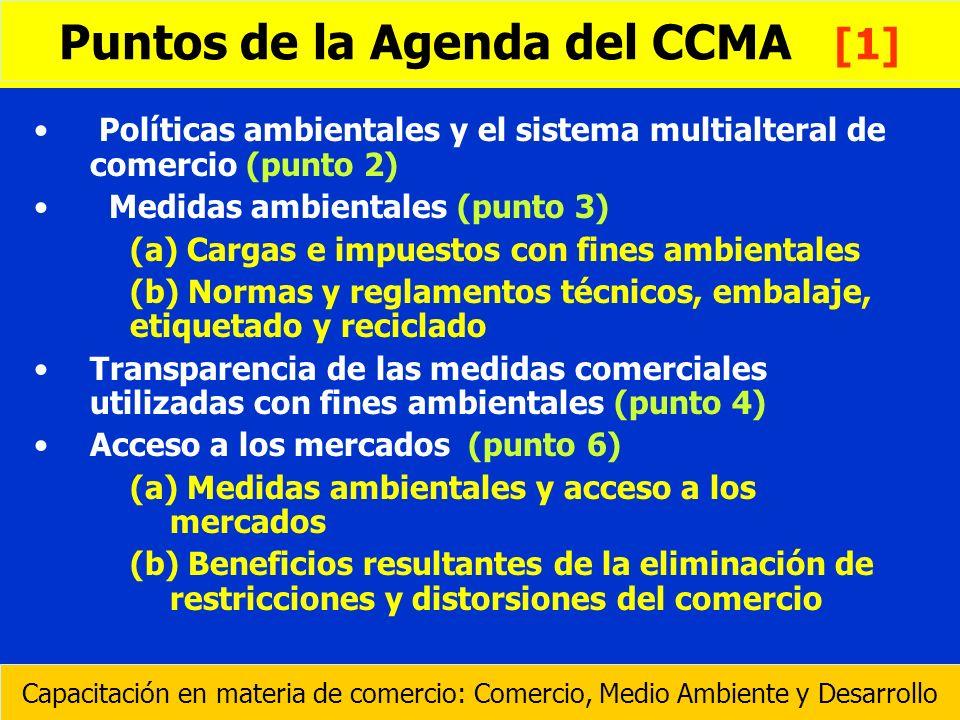 Puntos de la Agenda del CCMA [1]